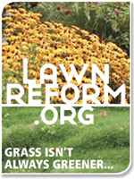 Lawn Reform Coalition badge: Grass is not always greener...